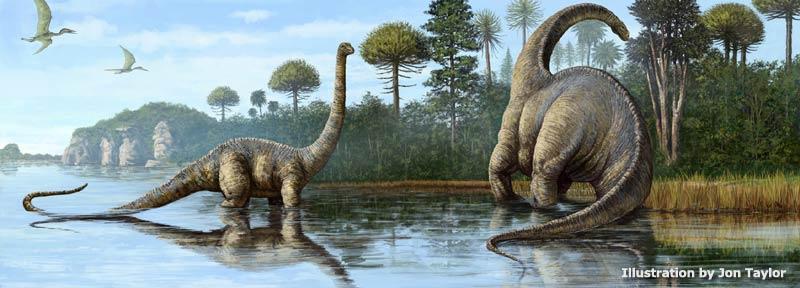 Jurassic period plants and animals - photo#35