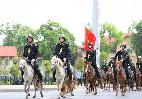 Những bình luận hài hước từ cộng đồng mạng về đoàn 'cảnh sát cơ động kỵ binh' diễu hành
