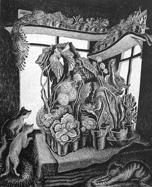 a Wanda Gag 1935 illustration of cats looking out a window