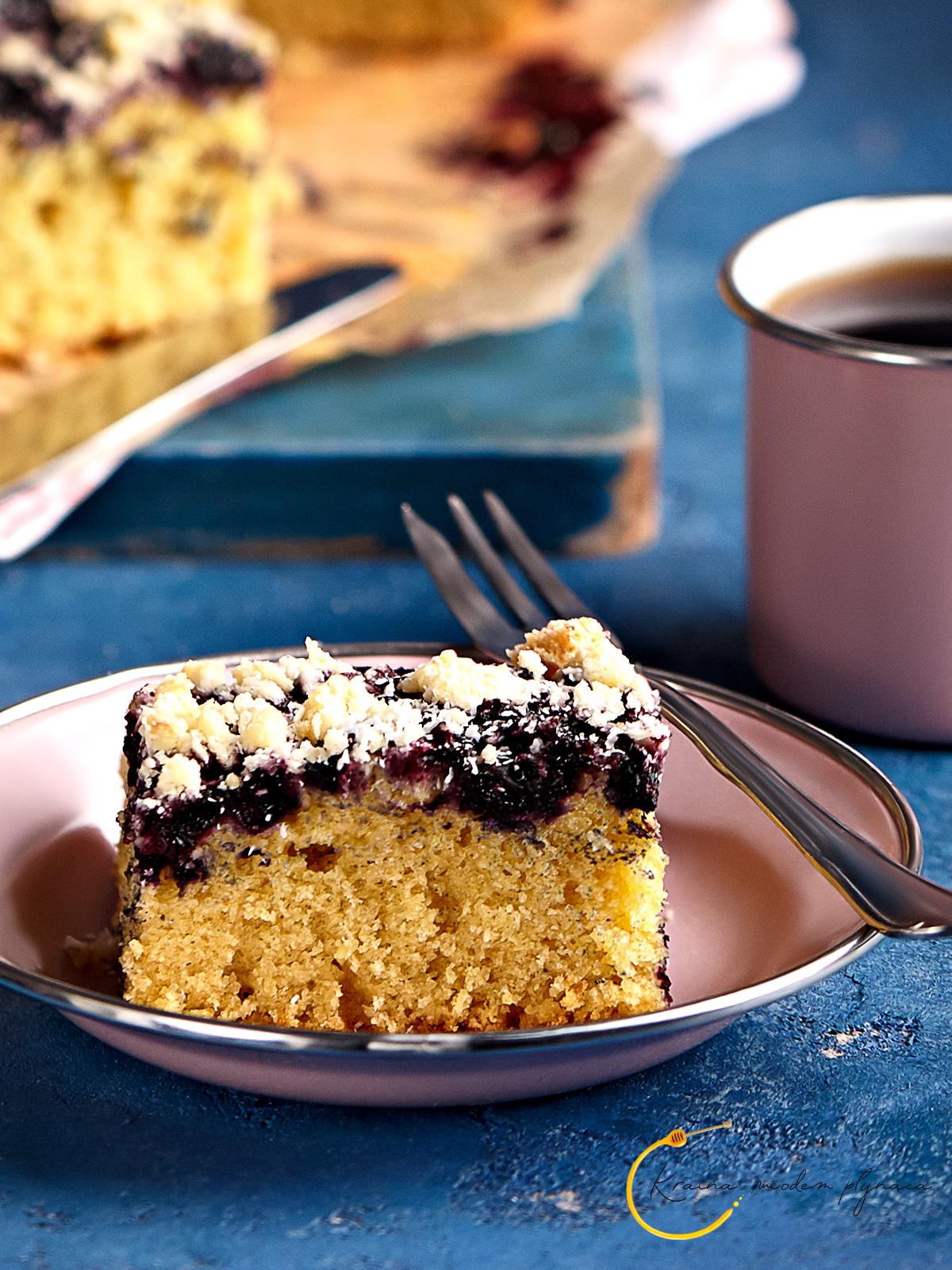 ciasto kokosowe, ciasto z jagodami, kokosowa kruszonka, ciasto z wiórkami kokosowymi, kruszona z wiórkami kokosowymi, ciasto na mleku kokosowym, kraina miodem płynąca, fotografia kulinarna szczecin