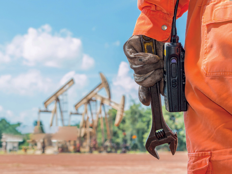 On the Oil Curse and Resource Management