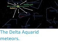 http://sciencythoughts.blogspot.com/2019/07/the-delta-aquarid-meteors.html