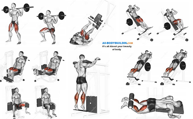 Best Leg Exercises That Will Give You Awesome Looking