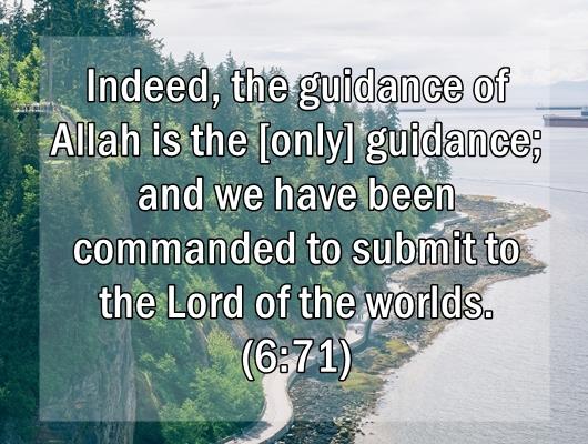 monday-reminder-quran-alanaam-6-71-islam
