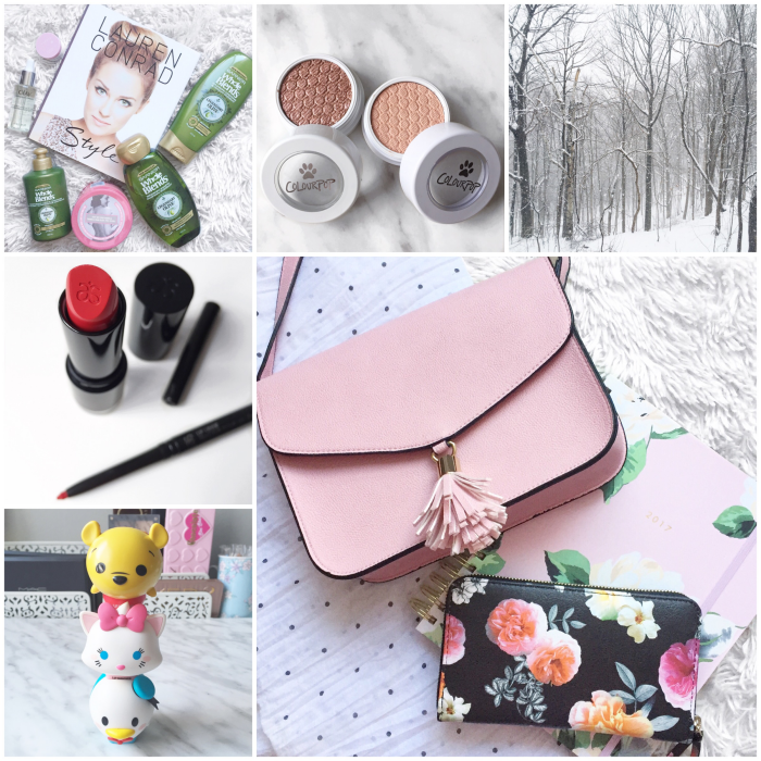 bbloggers, bbloggersca, canadian beauty bloggers, toronto blogger, fbloggers, lbloggers, instagram roundup, disney lipsmackers, tsum tsum, chapters indigo, tassle bag, floral wallet, arbonne canada, garnier whole blends, legendary olive, colourpop cosmetics, nkla, cat nap, puppy love, eyeshadow