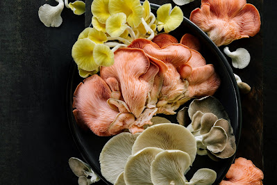 Mushroom Supplier Company in Kalyan-Dombivali
