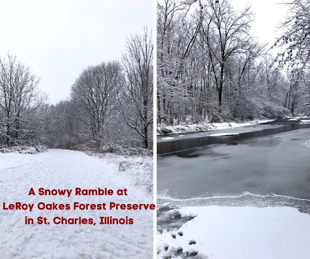 A Snowy Ramble at LeRoy Oakes Forest Preserve in St. Charles, Illinois