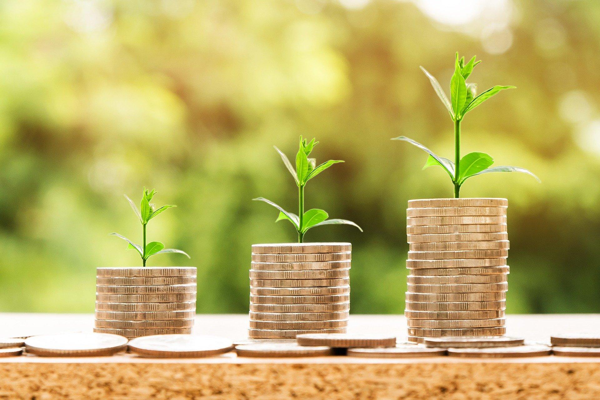 صورة تمثل الصدقة كأنك تزرع النقود لتثمر لاحقا