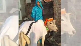 bhaarat mein ek avivaahit jode ne apane bete ke roop mein ek bachhade ko god liya tha