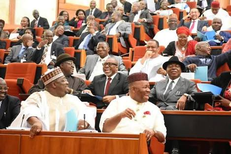 Pro-Buhari Comment: Senate rejects Omo-Agege's apology