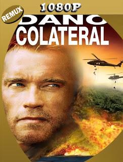 Daño colateral (2002) REMUX [1080p] Latino [Google Drive] Panchirulo