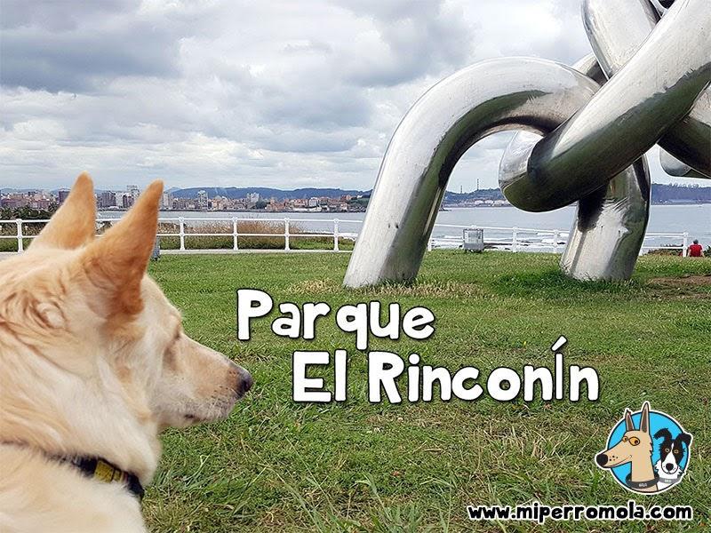 Can de Palleiro en el Parque El Rinconín con Perros