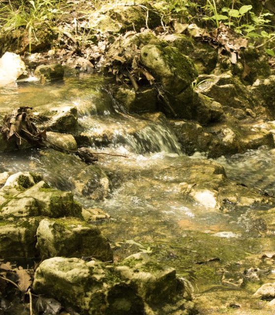 Small waterfall on the Ozark Trail. Image credit Janet of Go Learn Things.