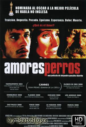 Amores Perros [2000] [Latino] HD 1080P [Google Drive] GloboTV