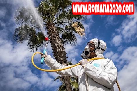 أخبار الصحافة: المغرب تدخل المرحلة الثانية من انتشار فيروس كورونا المستجد covid-19 corona virus كوفيد-19