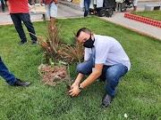 Superintendente Adones Moura prestigia eventos do Dia da Árvore em Igarapé Grande e Bernardo do Mearim