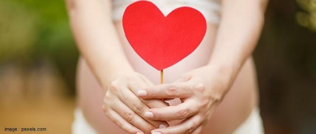 5 Tips Mempersiapkan Kehamilan dan Persalinan - Blog Mas Hendra