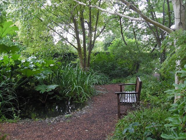 ogród leśny woodland garden oczkow wodne