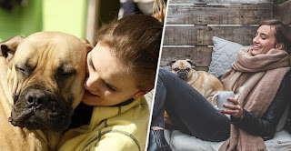 People Born Between 1980 And 2000 Treat Their Pets As If They Were Their First Child
