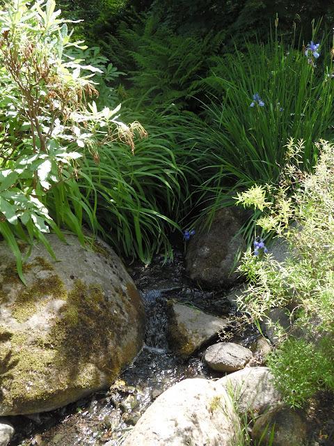 strumień i kamienie w ogrodzie japońskim