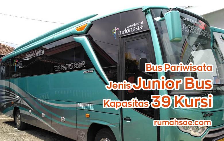 Denah Tempat Duduk Bus Pariwisata Jenis Junior Seat 2-2 Kapasitas 39 dan 41
