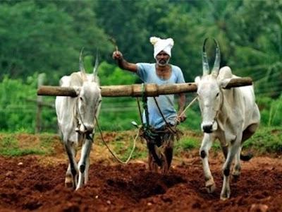 किसानों की आय दोगुना करने के प्रयास में जुटी सरकार: जेटली