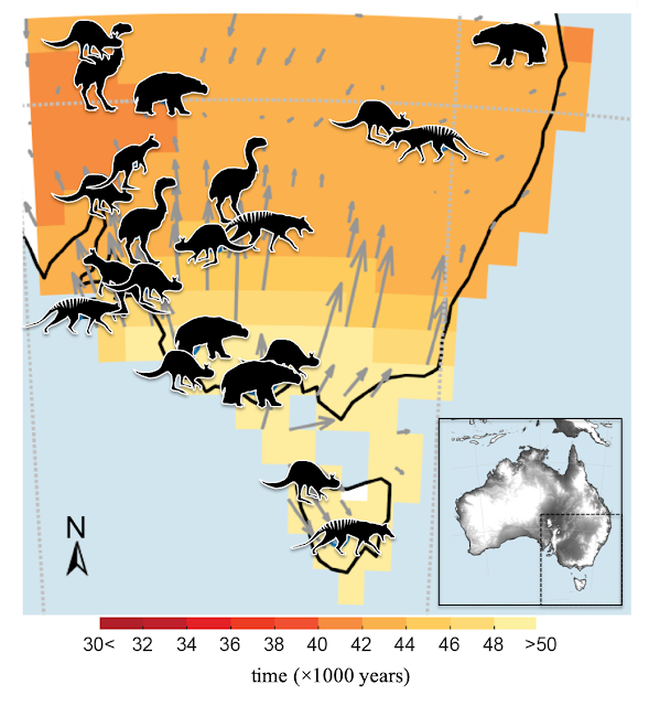 People and climate led to Australia's megafauna extinction