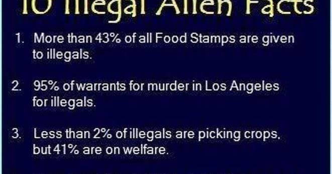 Food Stamps Given To Illegals
