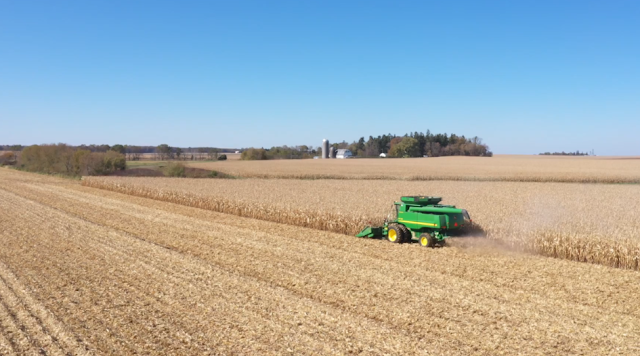 continuous corn nutrient management nitrogen fertilizer minnesota yield