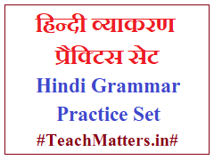 image : Hindi Grammar Practice Set @ TeachMatters