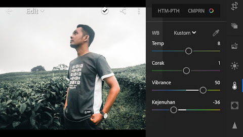 Tutorial Cara Edit Foto Filter Dark Steel Urban Lightroom Mobile
