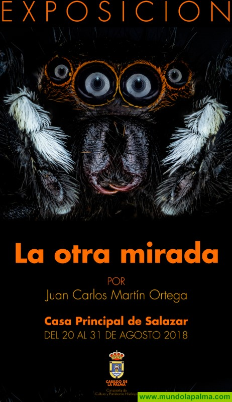 Las macrofotografías extremas de Juan Carlos Martín pueden visitarse desde hoy en la Casa Principal de Salazar