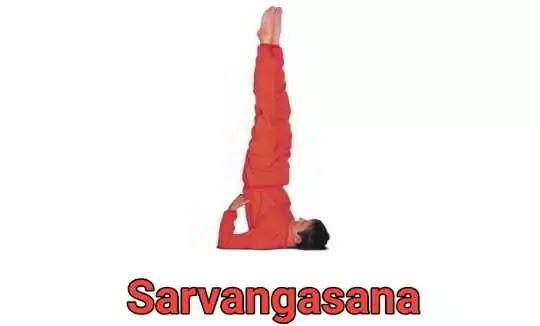 Sarvangasana Yoga Benefits, Steps, and Precautions.