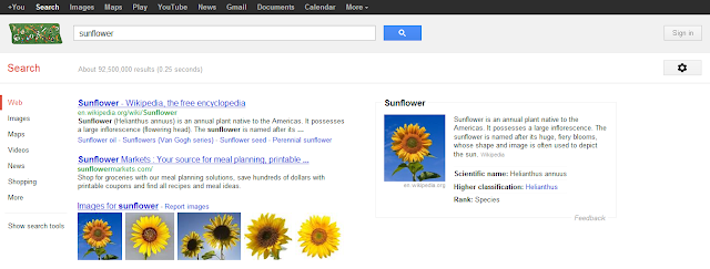 google-semantic-search -example-3