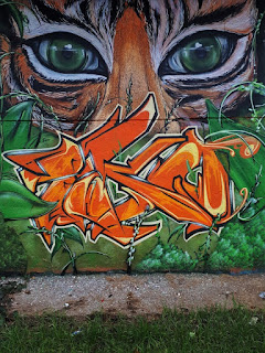 Saarbrücken graffiti wall tiger