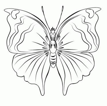 Gambar kupu kupu hitam putih