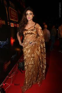 Actress Model Sony Charishta Stills in Beautiful Embroidery Saree at Gemini TV 2016 Puraskaralu Event  0129.JPG