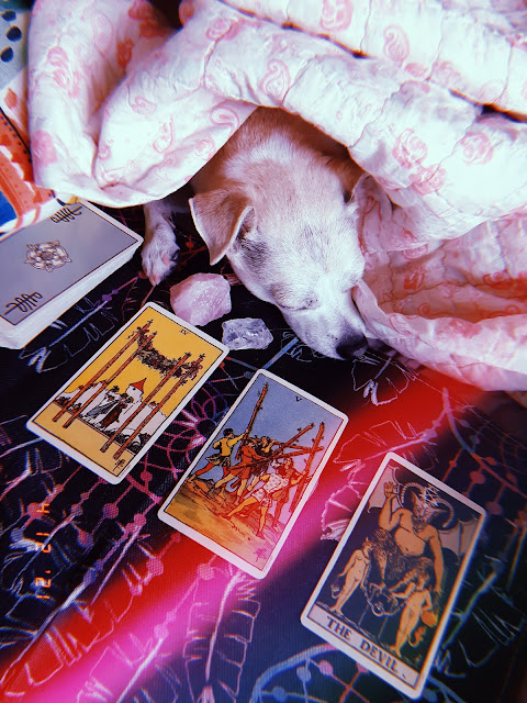 Capricorn Tarot Reading