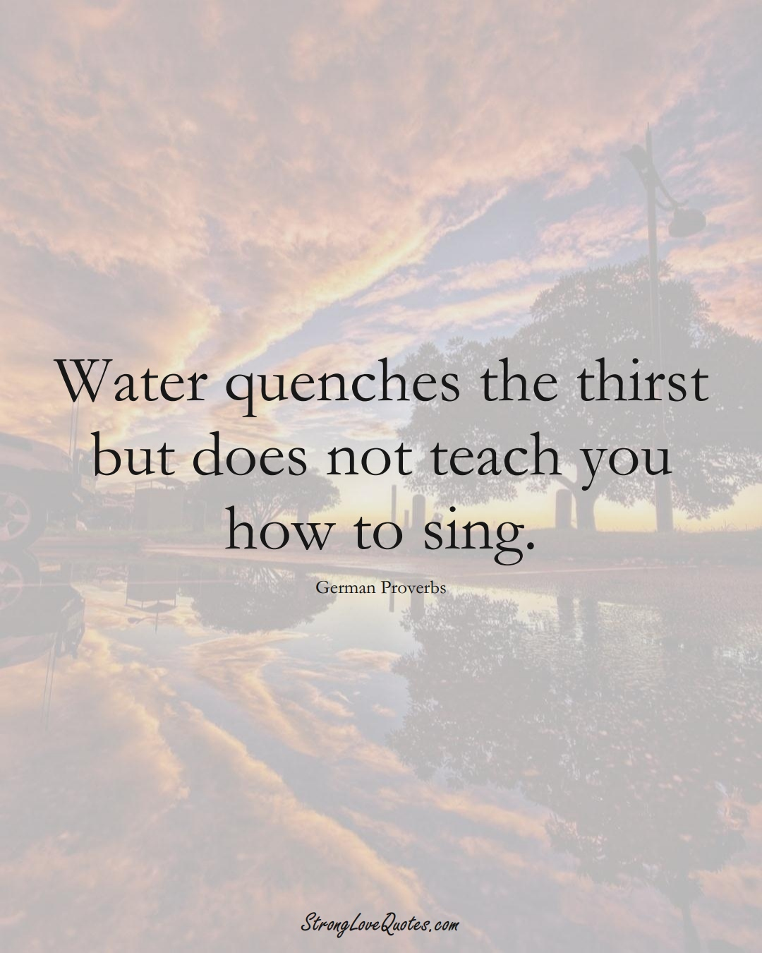 Water quenches the thirst but does not teach you how to sing. (German Sayings);  #EuropeanSayings