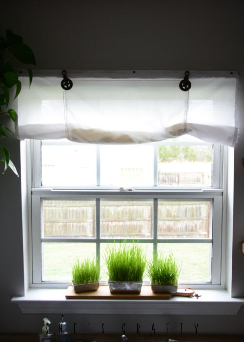 How to use wheat grass in your home decor - place in the kitchen window seal.