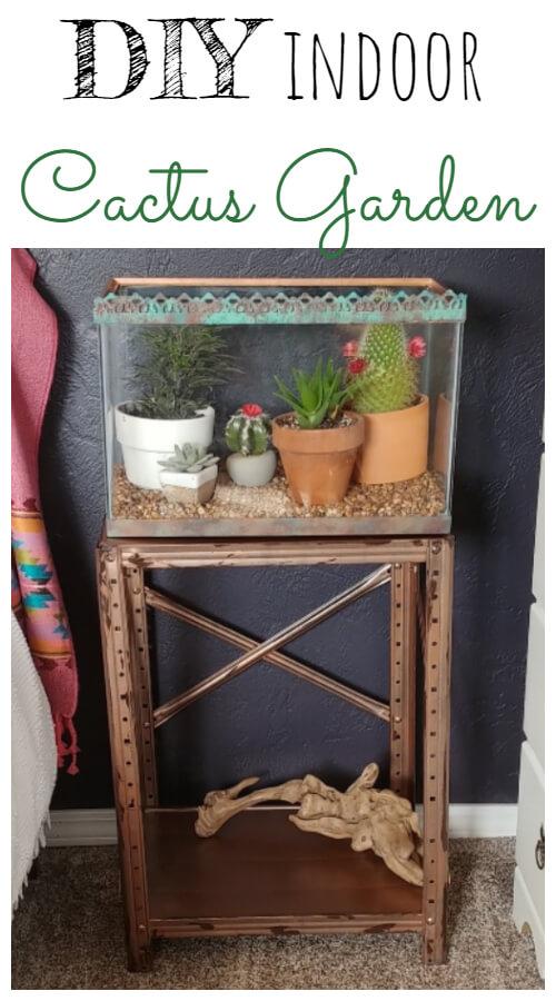 DIY Indoor Cactus Garden - Thrift the Look