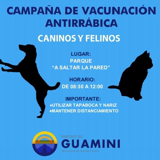 campaña-perros-y-gatos-casbas