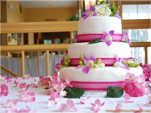 صور تورتات اعياد ميلاد 12 | Birthday cake photos 12