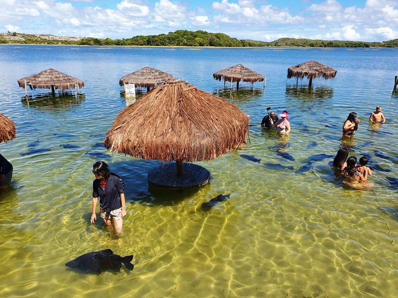 Lagoa dos Tambaquis, próximo a Praia do Saco