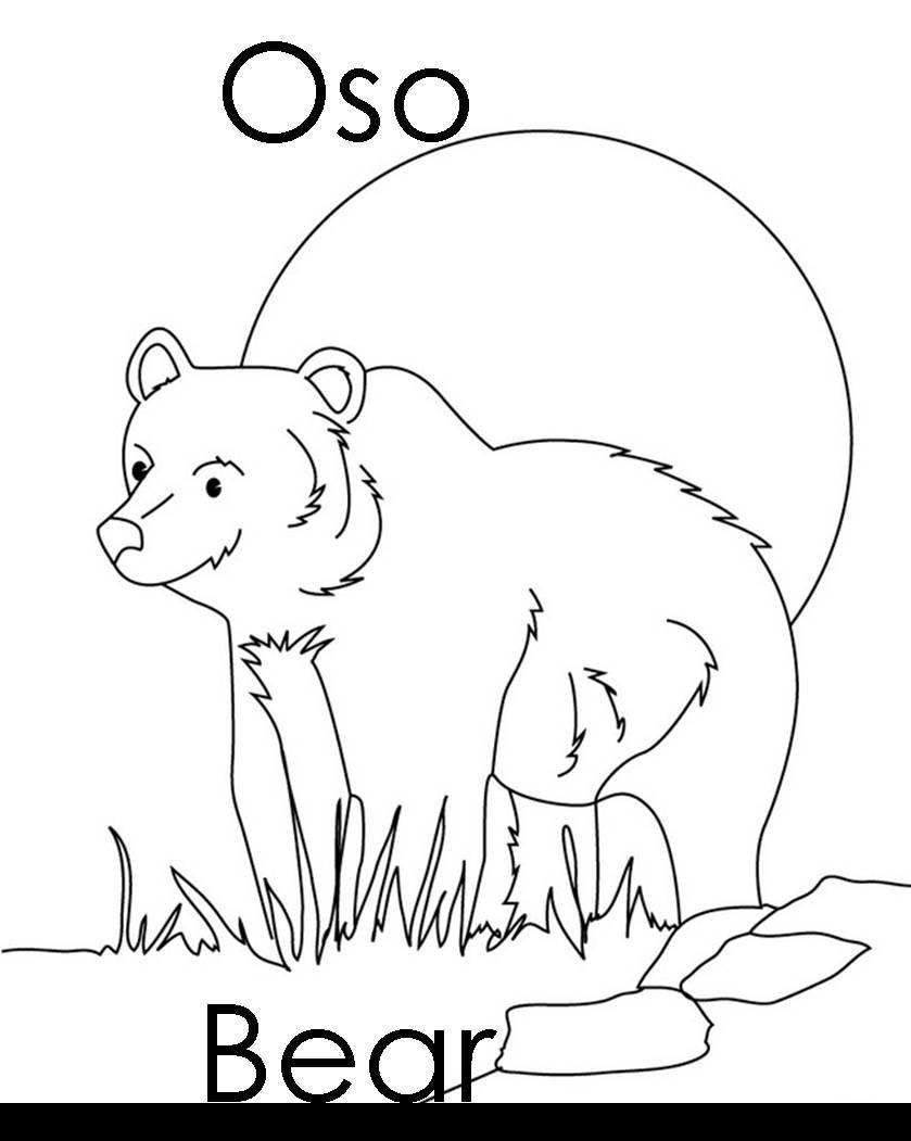 Imagenes para dibujar en Ingles y español: Animales del