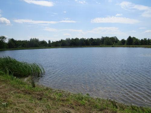 Lake David
