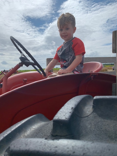 Boy sitting on vintage red tractor