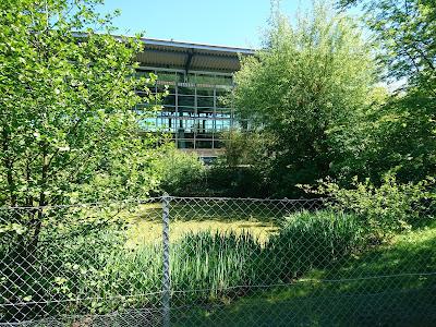 Frontansicht Glasfassade Sportbad. Rechts und links Büsche, vor dem Bad ein Teich mit Entengrütze und ein Zaun.