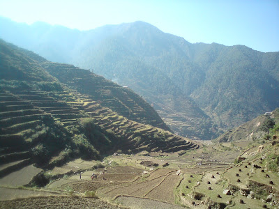 Magnificient fields enroute to Birahi in the Himalayas