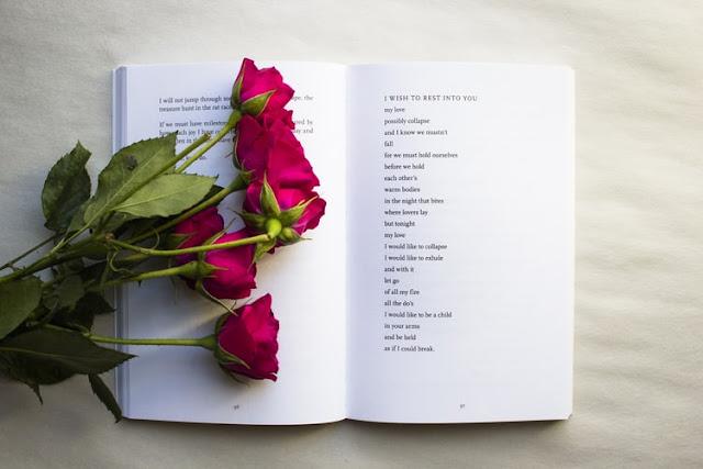 60+ Best Poetry Blog Names